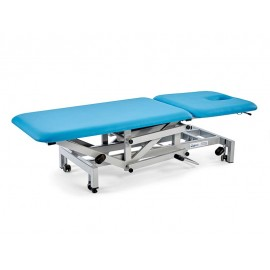 Performance 2 Section Electric Couch